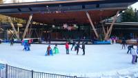 whistler-ice-skating-rink.jpg