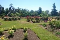 queen-elizabeth-park-rose-garden.jpg