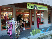 Bear Necessities Whistler Exterior