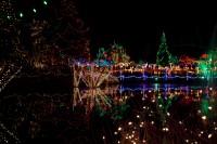 VanDusen-Botanical-Garden-Night-Winter-2.jpg