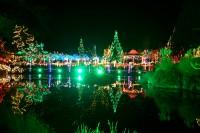 VanDusen-Botanical-Garden-Night.jpg