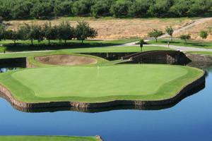 Golf Theme Vacation Travel